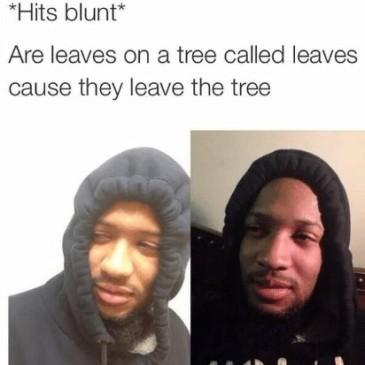 Hit blunts 1